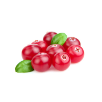 e-Liquid Cranberry 10 ml
