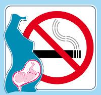 schwanger rauch eingeatmet